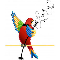 Music Enrichment for Parrots