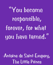 You are forever responsible for what you have tamed.